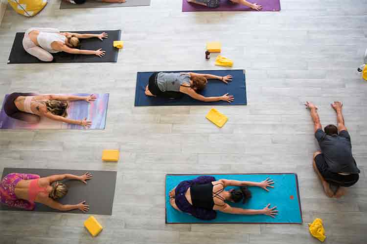 Photo of Tropical Vinyasa
