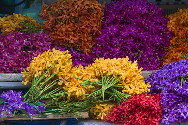 Photo of Bangkok Flower Market (Pak Khlong Talat)